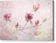 Whisper Of Spring Acrylic Print