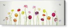 Whispering Spring Acrylic Print