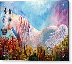 White Arabian Horse Acrylic Print by Mary Jo Zorad