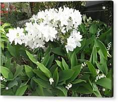 White Azaleas And Lily Of The Valley Acrylic Print by Kate Gallagher