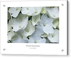 Acrylic Print featuring the digital art White Blossom by Julian Perry