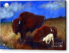 White Buffalo Calf Acrylic Print by Doris Blessington