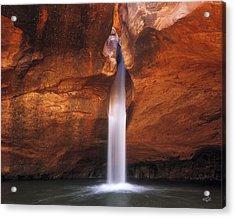 White Canyons Acrylic Print by Leland D Howard