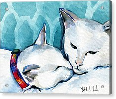 White Cat Affection Acrylic Print