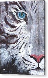 White Cat Acrylic Print