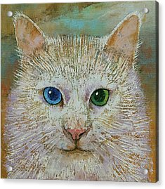 White Cat Acrylic Print by Michael Creese