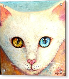 White Cat Acrylic Print by Shijun Munns