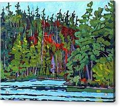 White Cedar Shore Acrylic Print