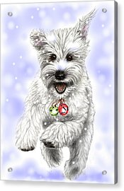 White Christmas Doggy Acrylic Print by Heidi Kriel