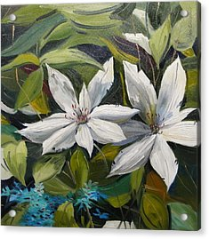 Acrylic Print featuring the painting White Clematis by John Williams