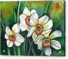 White Daffodils Acrylic Print by Linda Nielsen