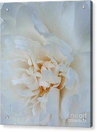 White Dream Acrylic Print by Valia Bradshaw