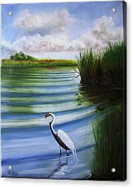 White Egret Fishing Acrylic Print