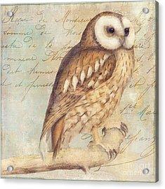 White Faced Owl Acrylic Print