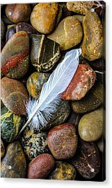 White Feather On River Stones Acrylic Print by Garry Gay