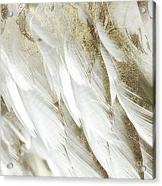 White Feathers With Gold Acrylic Print by Mindy Sommers