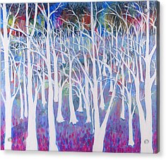 White Forest Acrylic Print by Rollin Kocsis