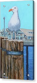 White Gull Acrylic Print