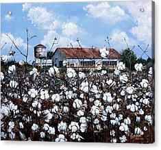 White Harvest Acrylic Print