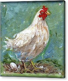 White Hen Lays Egg Acrylic Print by Doris Blessington