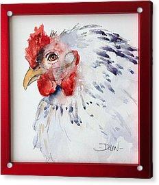 White Hen Acrylic Print