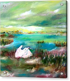 White Heron In Florida Marsh Early Morning Acrylic Print