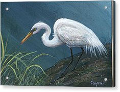 White Heron Acrylic Print by Peggy Conyers