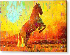 White Horse - Pa Acrylic Print