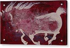 White Horse Acrylic Print by Sima Amid Wewetzer