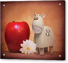 Acrylic Print featuring the photograph White Horse With Apple by Tom Mc Nemar