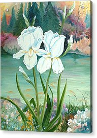 White Iris Love Acrylic Print by Renate Nadi Wesley
