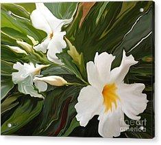 White Jasmine Acrylic Print by Corey Ford