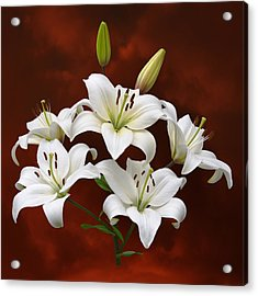 White Lilies On Red Acrylic Print by Jane McIlroy