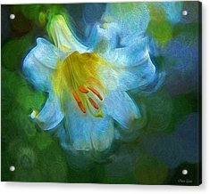 White Lily Obscure Acrylic Print