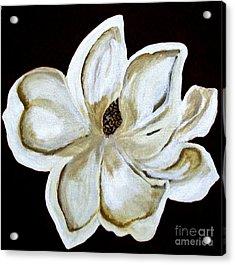 White Magnolia On Black Acrylic Print by Marsha Heiken