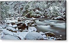 White On Green Acrylic Print by Mark Lucey