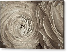 Acrylic Print featuring the painting White On White Rose by Joan Reese