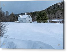 White On White Acrylic Print