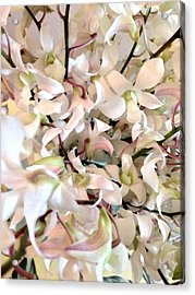 White Orchid Cluster Acrylic Print