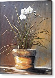 White Orchid In Oil Acrylic Print by Beth Maddox