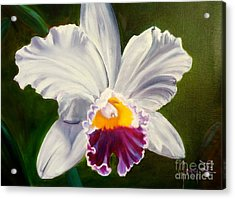 Acrylic Print featuring the painting White Orchid by Jenny Lee