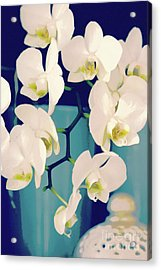 White Orchids In Turquoise Vase Acrylic Print