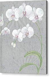 White Orchids On Sprigs  Acrylic Print by Marja Koskinen-Talavera