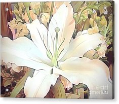 White Painted Lily Acrylic Print