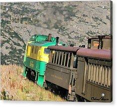 White Pass Yukon Route Railroad Acrylic Print by Dennis Stein