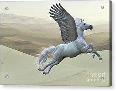 White Pegasus Horse Acrylic Print