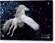 White Pegasus In Sky Acrylic Print