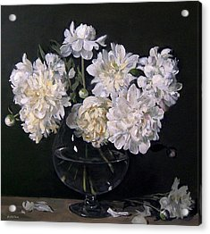 White Peonies Are Ready To Explode Acrylic Print