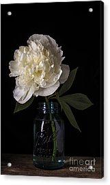 White Peony Flower Acrylic Print by Edward Fielding