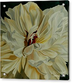 White Peony Acrylic Print by Julie Pflanzer